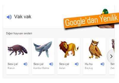 GOOGLE ARAMALARINA HAYVAN SESLERİNİ EKLEDİ.