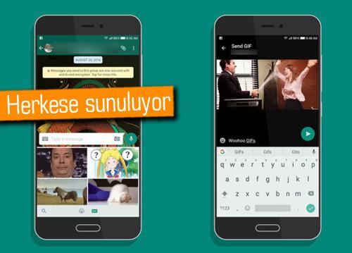 WhatsApp'ta GIF arama ve paylaşma dönemi